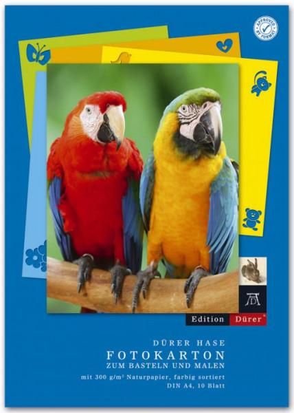 Fotokarton Block 10 Blatt A4 300 g/qm farblich sortiert