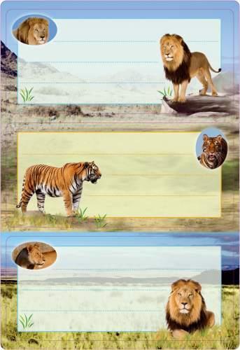 Buchschild Raubkatzen beglimmert 76x35 cm