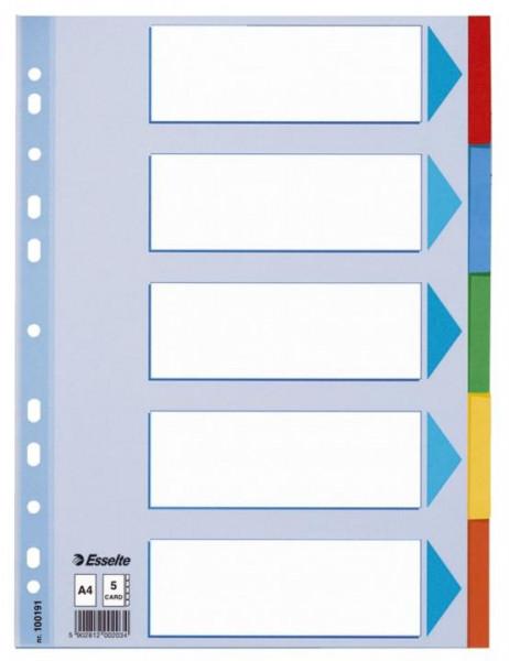 Esselte Register blanko aus Karton