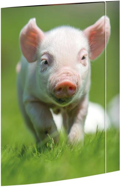 RNK Sammelmappe A3 Schweinchen