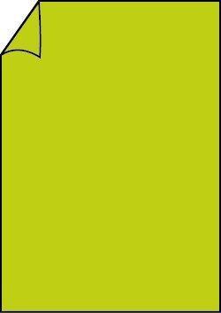 Briefbogen A4 maigrün 100 Blatt